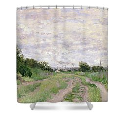 Path Through The Vines At Argenteuil Shower Curtain by Claude Monet