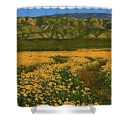 Path Through The Wildflowers Shower Curtain