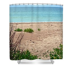 Pathway To The Beach Shower Curtain by Sandi OReilly