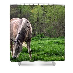 Peaceful Pasture Shower Curtain by Lydia Holly