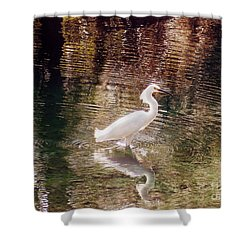 Shower Curtain featuring the photograph Peaceful Waters by Lydia Holly