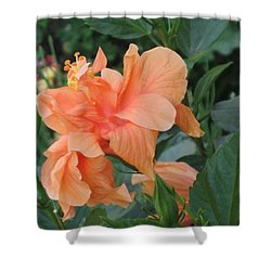 Peach Hibiscus  Shower Curtain