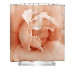 Peach Pastel Rose Flower Shower Curtain by Jennie Marie Schell