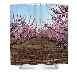 Peaches To Be Shower Curtain by Skip Willits