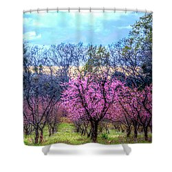 Peachy Blossum Scene2 Shower Curtain
