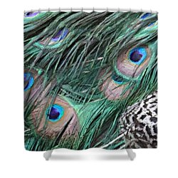 Shower Curtain featuring the photograph Peacock Feathers by Donna  Smith