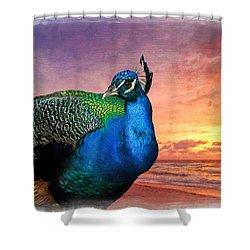 Peacock In Paradise Shower Curtain by Debra and Dave Vanderlaan