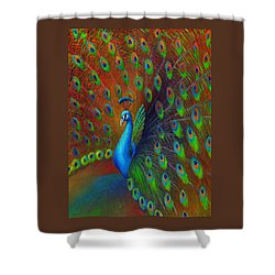 Peacock Spread Shower Curtain by Nancy Tilles