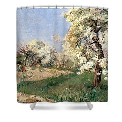 Pear Blossoms Shower Curtain by Childe Hassam