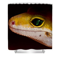 Peeping Mike Shower Curtain