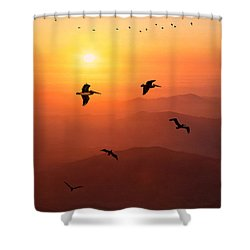 Shower Curtain featuring the photograph Pelican Migration by Chris Lord