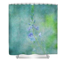 Perfect Dream Shower Curtain by Kim Hojnacki