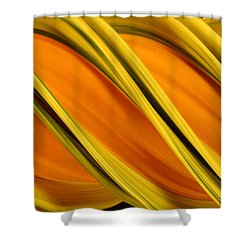 Peripheral Streak Image Of Squash Shower Curtain by Ted Kinsman