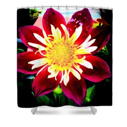 Personally Dahlia Shower Curtain