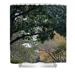Petrifying Springs Golf Course Shower Curtain by Kay Novy