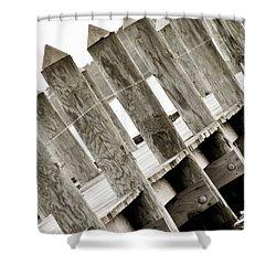 Phillies Dock Halladay Shower Curtain by Trish Tritz