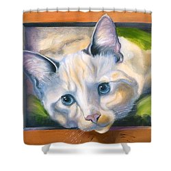 Picture Purrfect Shower Curtain