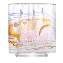Pig With Piglets  Shower Curtain by Simon Bratt Photography LRPS