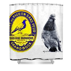 Pigeon Grand Bock Shower Curtain by Bill Cannon