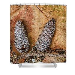 Pine Cones And Leaves Shower Curtain by Deborah Benoit