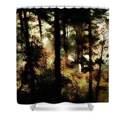 Pine Trees Shower Curtain by Dariusz Gudowicz