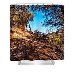 Pine Trees In El Chorro. Spain Shower Curtain by Jenny Rainbow