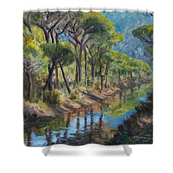 Pine Wood Reflections Shower Curtain by Marco Busoni
