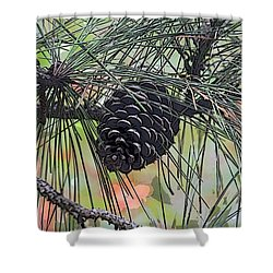 Shower Curtain featuring the photograph Pinecone by Donna  Smith