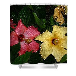 Shower Curtain featuring the photograph Pink And Yellow Hibiscus After The Rain by Renee Trenholm