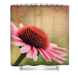 Pink Beauty Shower Curtain by Darren Fisher