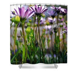 Pink Blossoming Flowers Shower Curtain by Sumit Mehndiratta