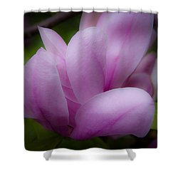 Pink Blossoms Shower Curtain by David Patterson