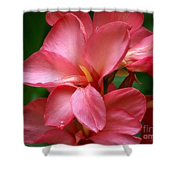 Pink Canna Shower Curtain