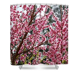 Shower Curtain featuring the photograph Pink Flood by Fotosas Photography