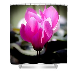 Pink Floral Shower Curtain by David Patterson