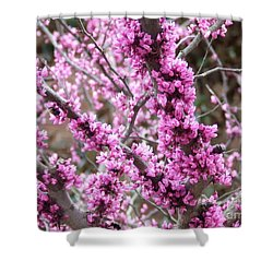 Shower Curtain featuring the photograph Pink Flower by Andrea Anderegg