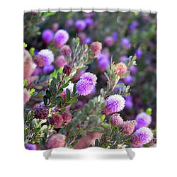 Shower Curtain featuring the photograph Pink Fuzzy Balls by Clayton Bruster