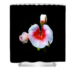 Shower Curtain featuring the photograph Pink Geranium by Lynn Bolt