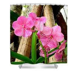 Pink Hawaiian Orchid Shower Curtain