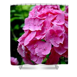 Pink Hydrangea Bloom Shower Curtain