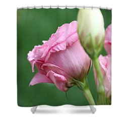 Pink Lisianthus Shower Curtain