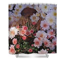 Shower Curtain featuring the photograph Pink Mum by Joseph Yarbrough