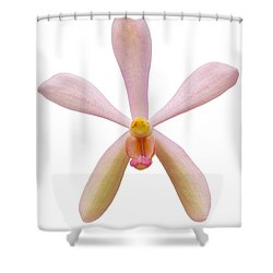 Pink Orchid Head Shower Curtain by Atiketta Sangasaeng