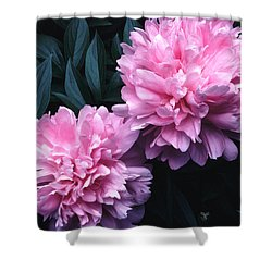 Pink Peony Pair Shower Curtain by Tom Wurl