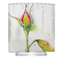 Pink Rosebud Shower Curtain