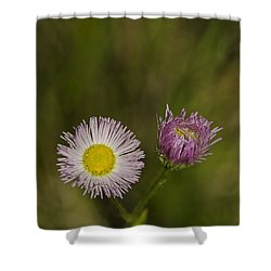 Pinky And Me Shower Curtain by LeeAnn McLaneGoetz McLaneGoetzStudioLLCcom