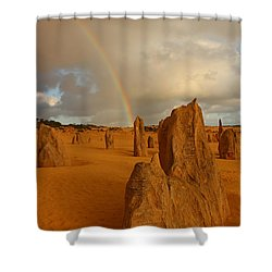 Pinnacle Rainbow Shower Curtain