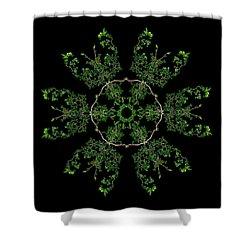 Pinwheel II Shower Curtain by Debra and Dave Vanderlaan