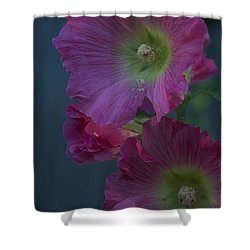 Shower Curtain featuring the photograph Piquant by Joseph Yarbrough
