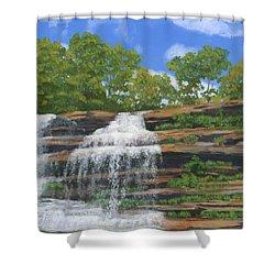 Pixley Falls Shower Curtain by Lynne Reichhart